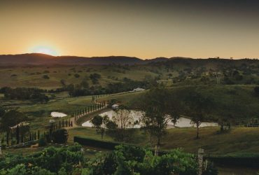 Vineyard Wedding Venue Brisbane